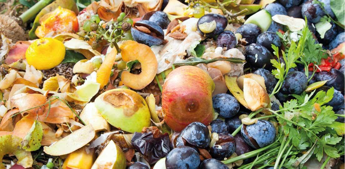 Serra contro lo spreco alimentare